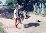 Gente do Sertão - o menino e o jumento (1)