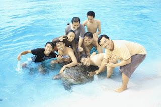 Pulau Derawan PDE Team Friends Penyu - Lupuzz Tarakan