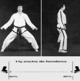 deportes marciales
