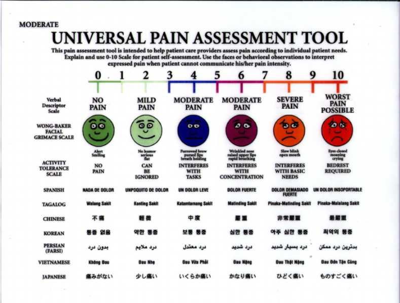 graphic regarding Pain Scale Chart Printable known as Similiar Tattoo Spot Soreness Scale Key terms