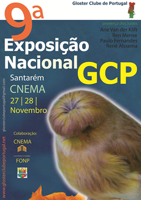 9ª exposiçao do GCP  Cartaz20101