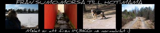 FRÅN SUMO-MORSA TILL HOT-MAMA :)