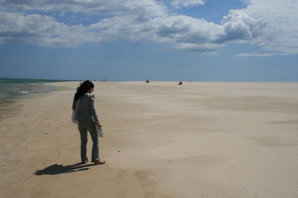 playas-de-armona