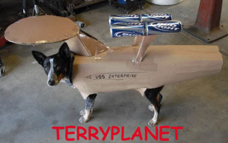 Terryplanet