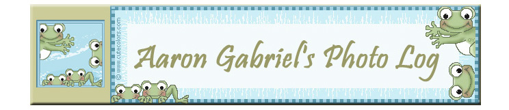 Aaron Gabriel