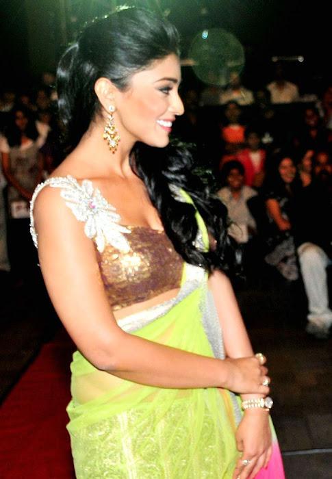 Shriya Saran in Fish Style Ghagra Choli in Star Awards Function