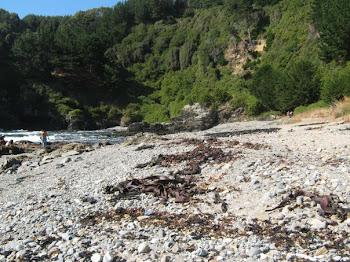 Playa Yerbas Buenas - sector Las Canchas