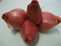 Bawang Merah (Asian Shallot)