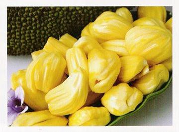 Nangka (Jackfruit)