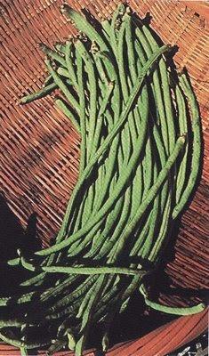Kacang Panjang (Long Beans)