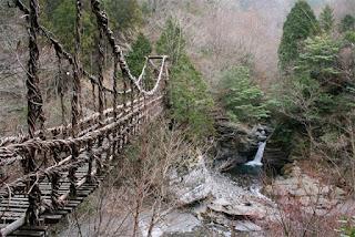 Inilah 3 Jembatan Akar Pohon Paling Unik di Dunia