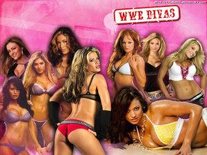 http://2.bp.blogspot.com/_BNamWKIjicI/RzsLEnMyVvI/AAAAAAAAAD4/lwywsq9KrRM/s400/WWE_Divas_Wallpaper__P_by_tscagonic.jpg
