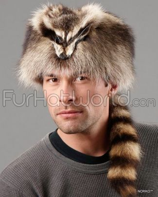 Coonskin_Cap_with_Face_Raccoon_Fur_169.jpg