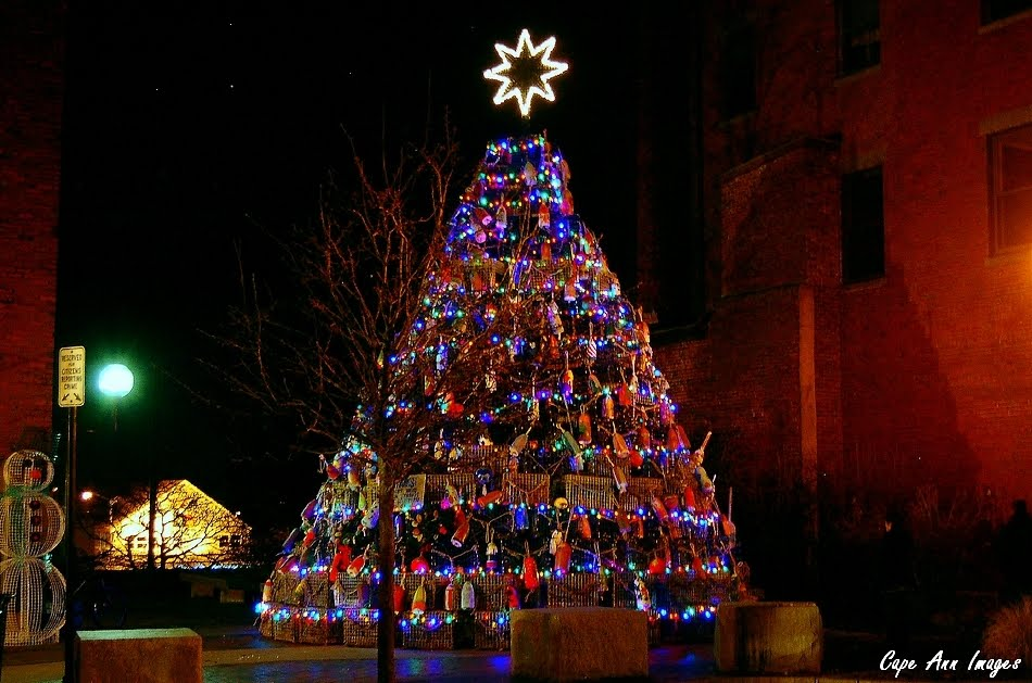 Lobster Trap Christmas Tree Gloucester | Lobster House