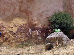 Petroglifos de Camatagua