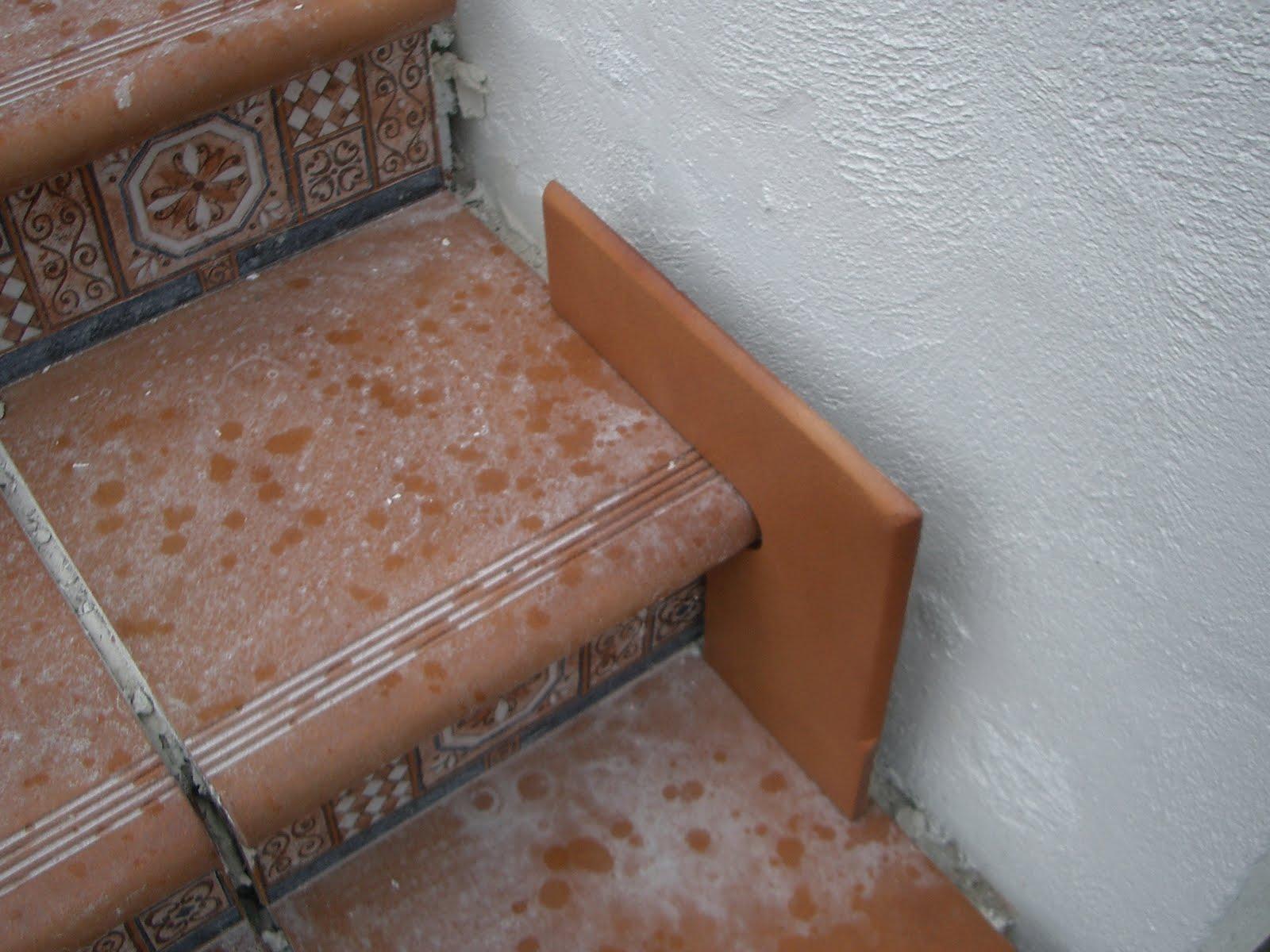 Quinta san carlos escaleras completas acceso al campo y - Losetas para pared ...