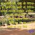 छोटी सी बिन्दिया और क्षणिकायें [कविता] - महावीर शर्मा