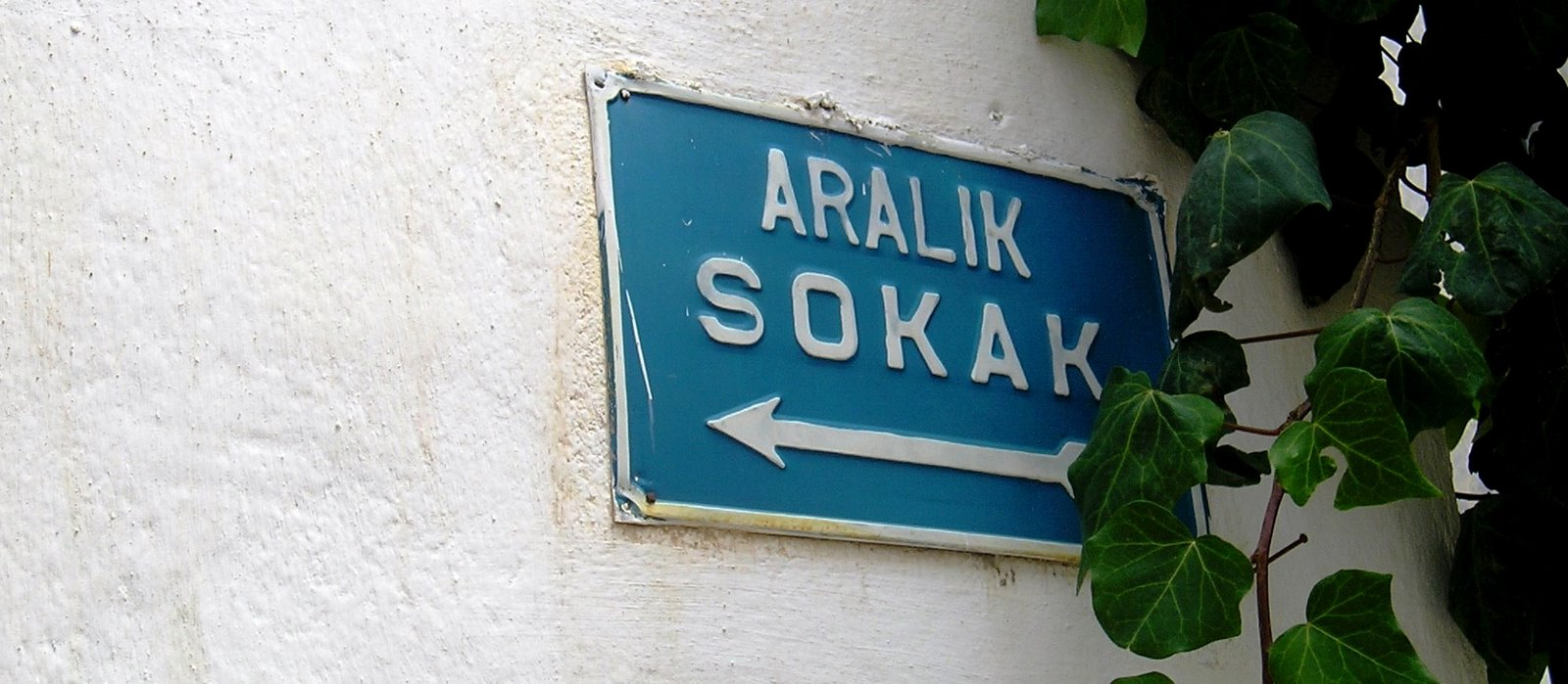 Aralik sokak