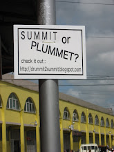 Summit or Plummit?