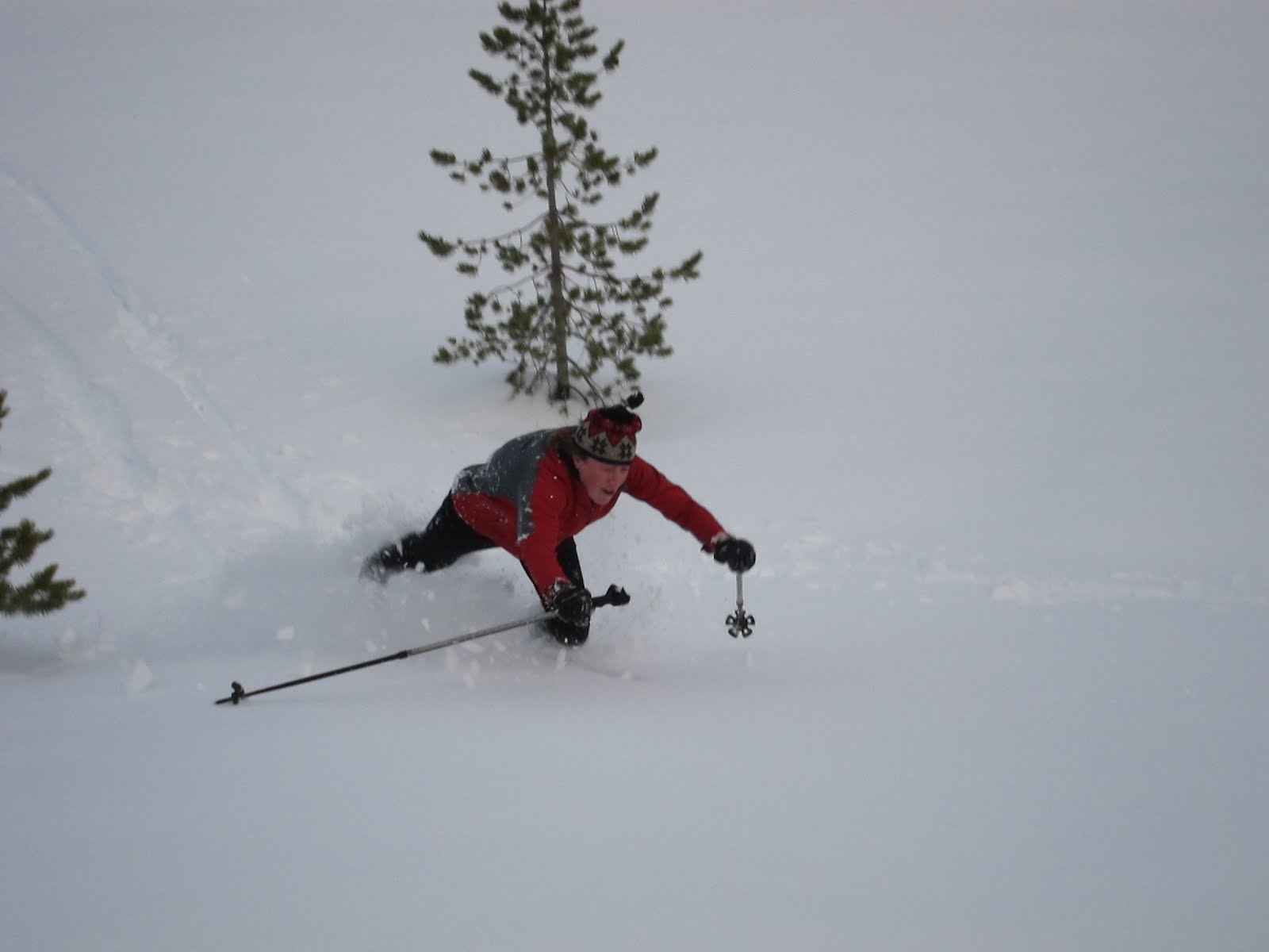 This Sunday January 9th is Free Ski Day on the North Valley Trails and Free ...