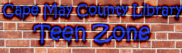 Cape May County Library Teen Zone