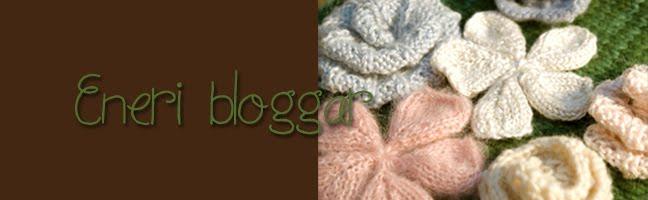 EneriBloggar