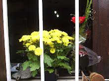 Flores de amor 23 /12/07 09:58