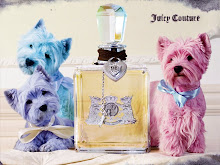 Colourful westies