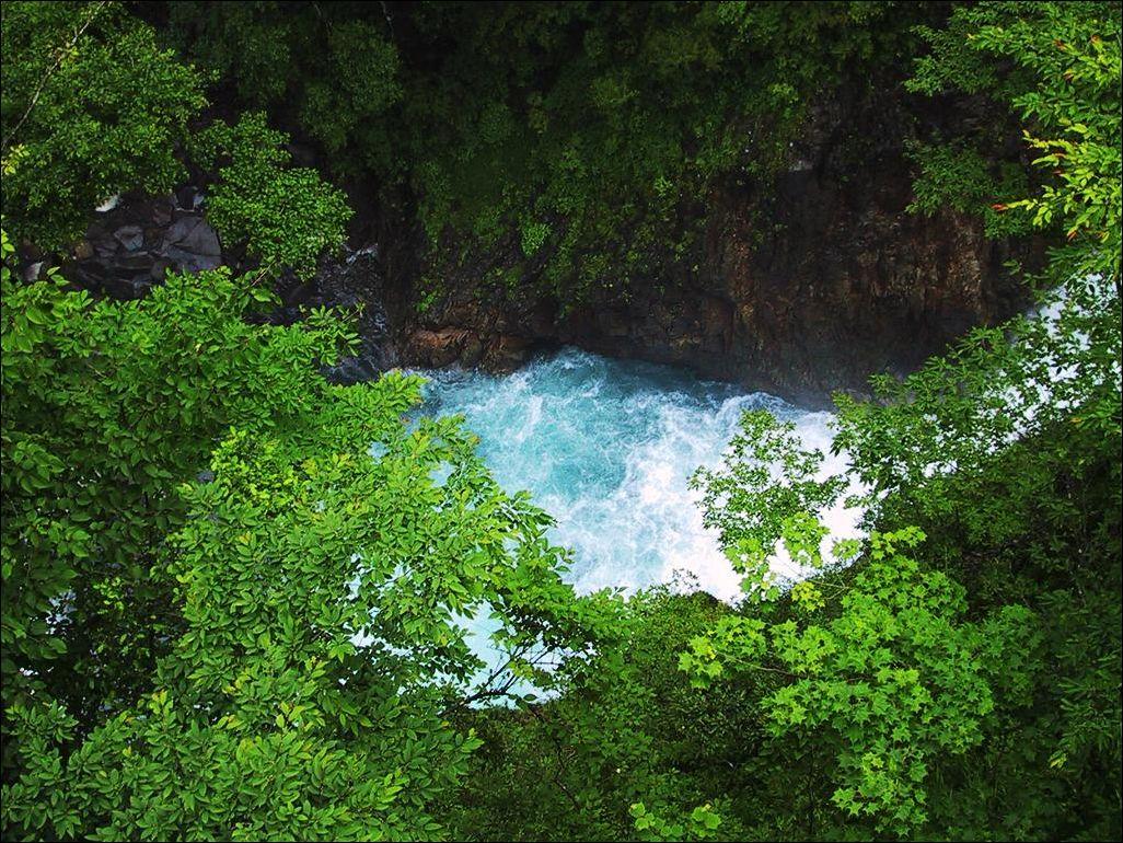 http://2.bp.blogspot.com/_BXWmVqWoUJ0/S96k6JOlK_I/AAAAAAAAAtI/zORxW8ZsrI8/s1600/Wallpaper-Nature-21090602.jpg