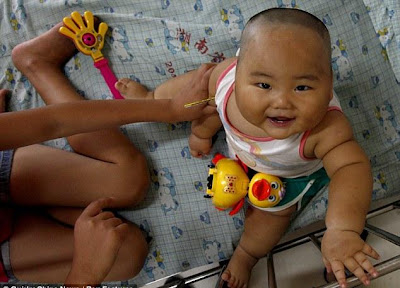 Fat asian baby