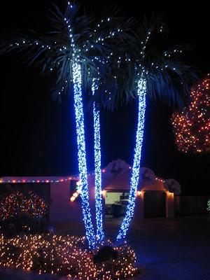 Family Christmas Lights