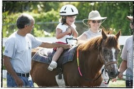 equine facilitating services counseling for developmental students adhd social skills depression anxiety