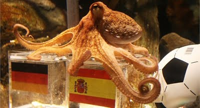 PAUL THE SOCCER-OCTOPUS IS DEAD!