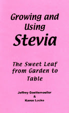 GROWING WITH STEVIA