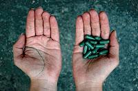 Dos manos, una ofrece pastillas verdes, a elegir entre ambas