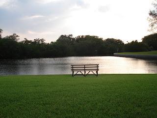 manatee bench