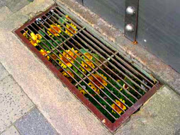 guerrilla gardening 1