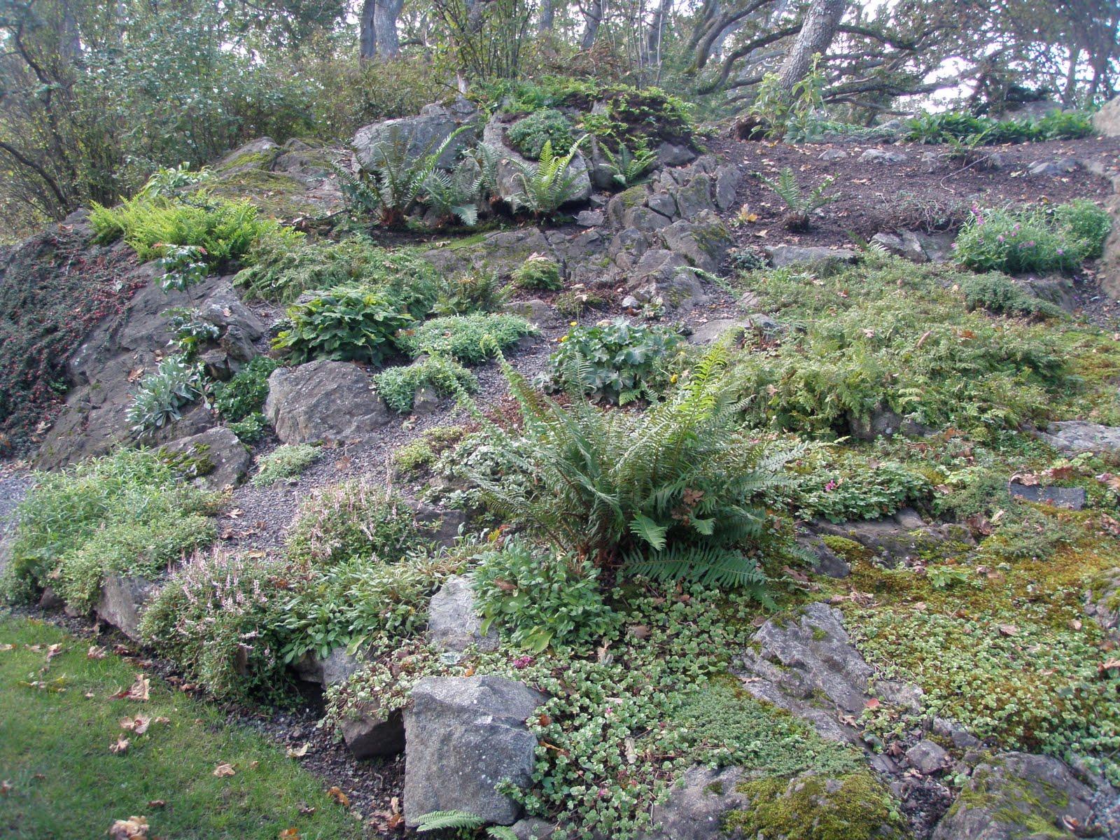 Revisiting British Columbian Rock Gardens