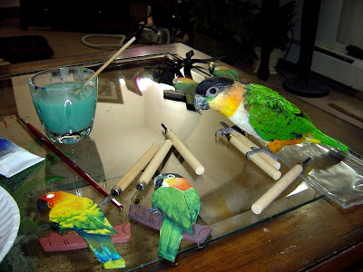 Caique parrot helps artist paint