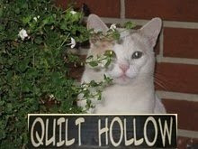 Quilt Hollow Blog
