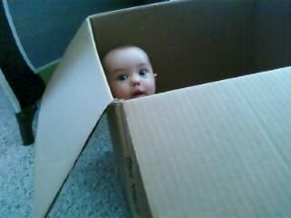 [JEM+box2]