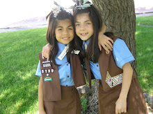 Our Little Brownies