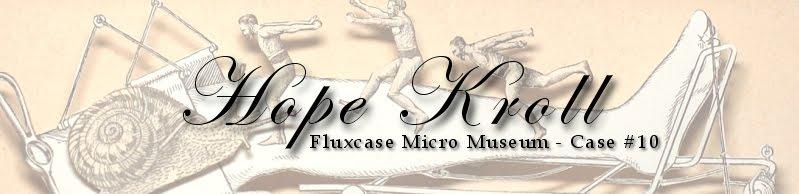 Fluxcase Micro Museum - Case #10