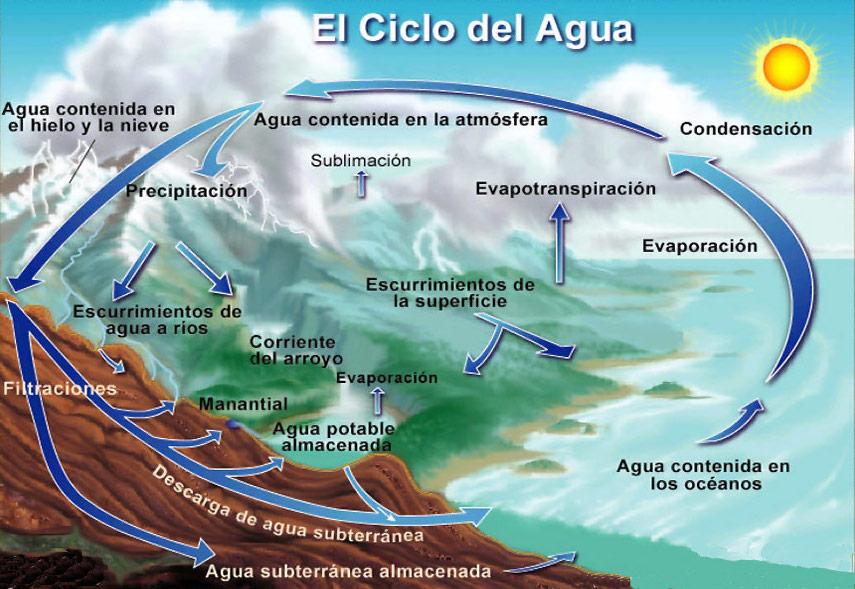 Frases Sobre A Importância Da água