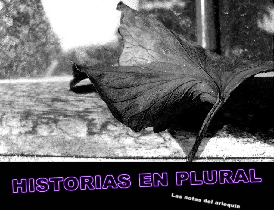 Historias en Plural
