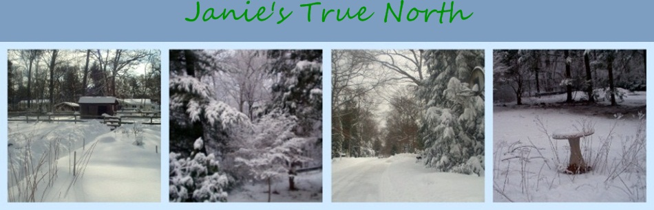 Janie&#39;s True North