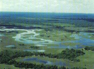 Pantanal Matogrossense