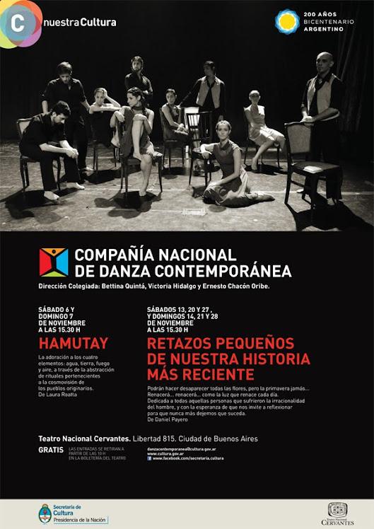 Afiche funciones Cervantes 2010