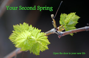 YOUR SECOND SPRING website