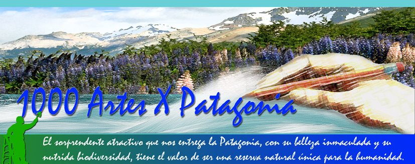 1000 artes x patagonia
